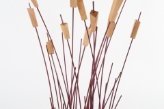 Reeds by Jarrett Maxwell - Geometric Innovations LLC